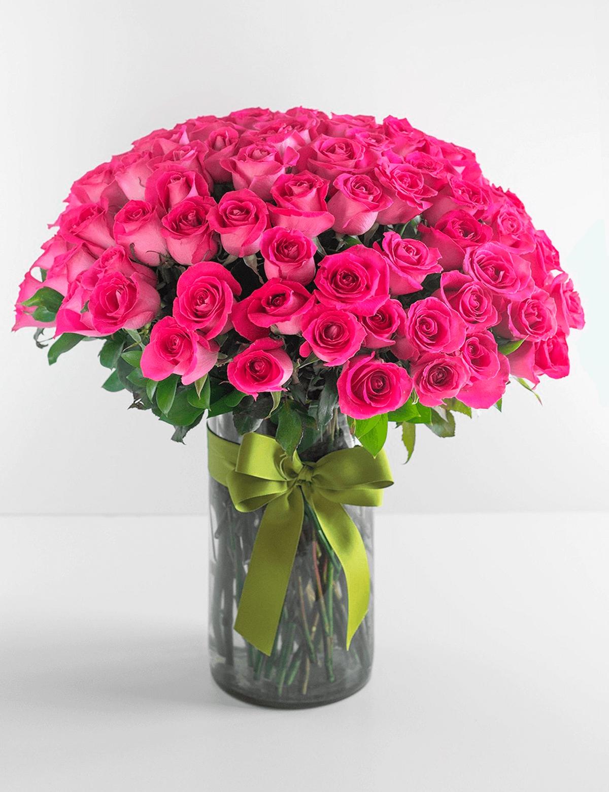 100 Rosas Fúcsia